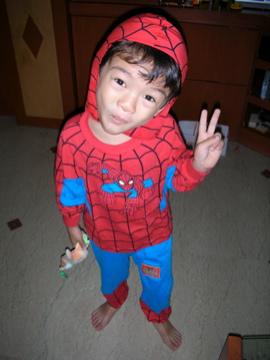 Spider-Zen
