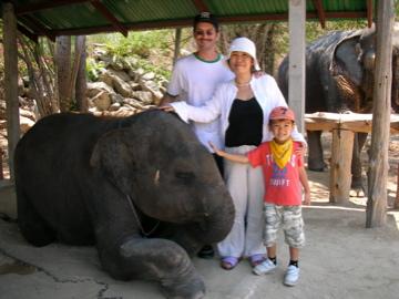 PNZ elephant 1