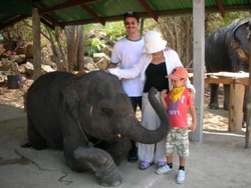 PNZ elephant 2