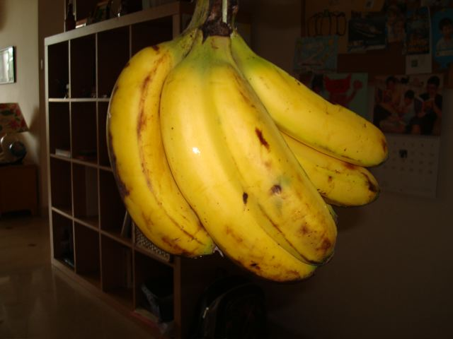 Siamese banana bunch