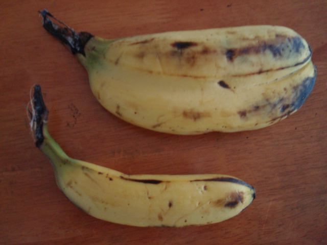 Siamese banana close-up