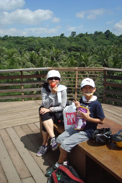 At the mangrove park tower at Pulau Ubin's Chew Jaya intertidal flats