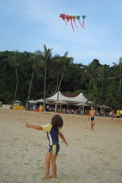 Kite kids 5