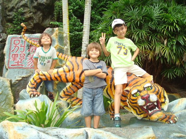 Three kids, one tiger