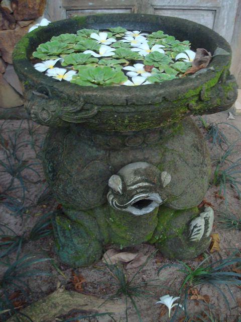 Turtle basin