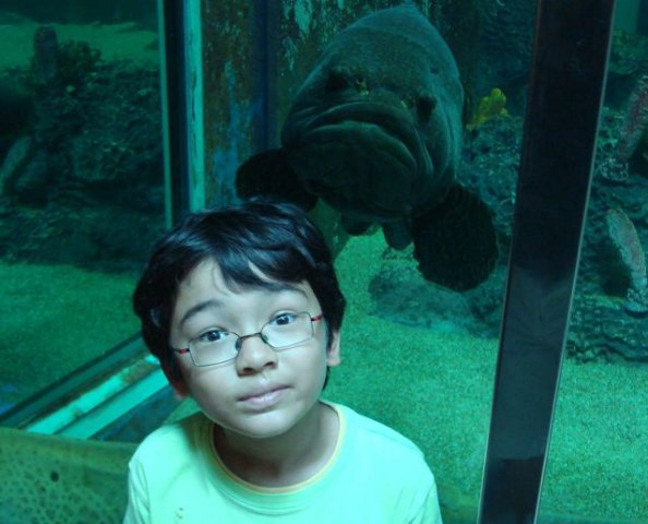 Look out, there's a giant fish over your shoulder (part 1)