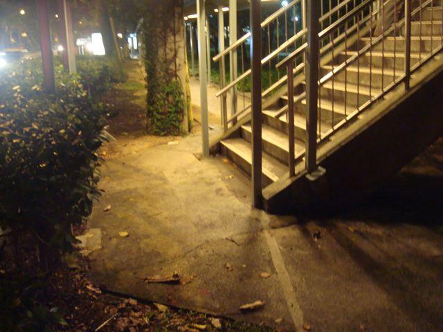 Singapore Sidewalk 2
