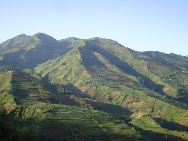 Scenery from the top of the Dieng Plateau.