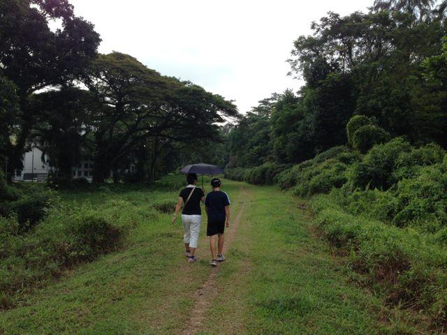 Green, green Singapore