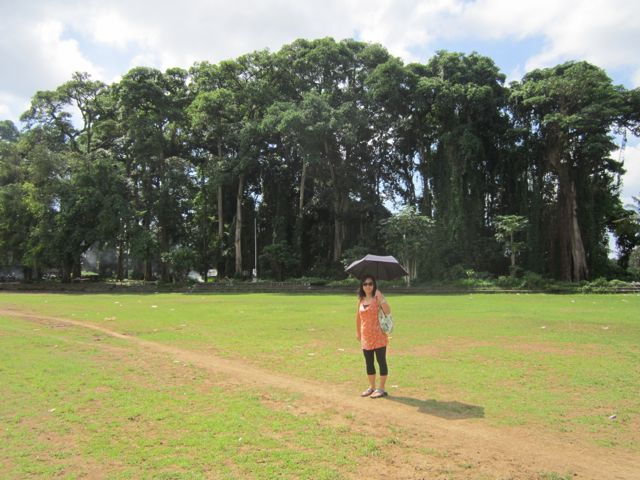 Football field in Ubud